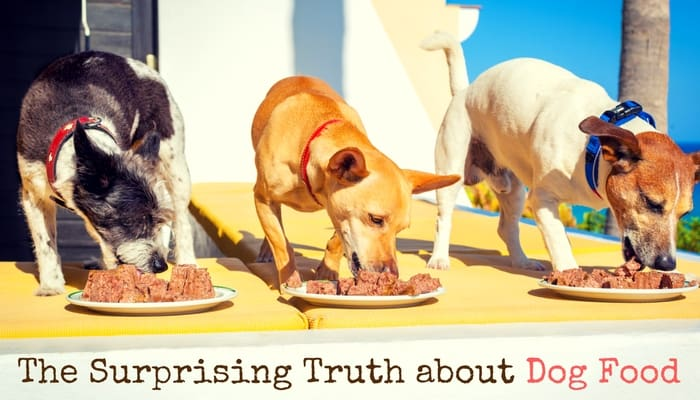 The Truth about Dog Food