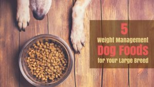 Weight Management Dog Foods For Large Breed Dogs