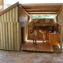 Dog Cabin