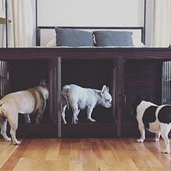 Dog House Triple Kennel