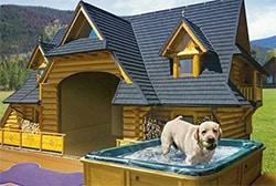 MTV-Crib-Worthy Dog House