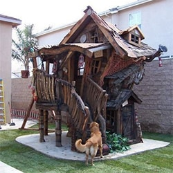 Weird Swamp Doghouse